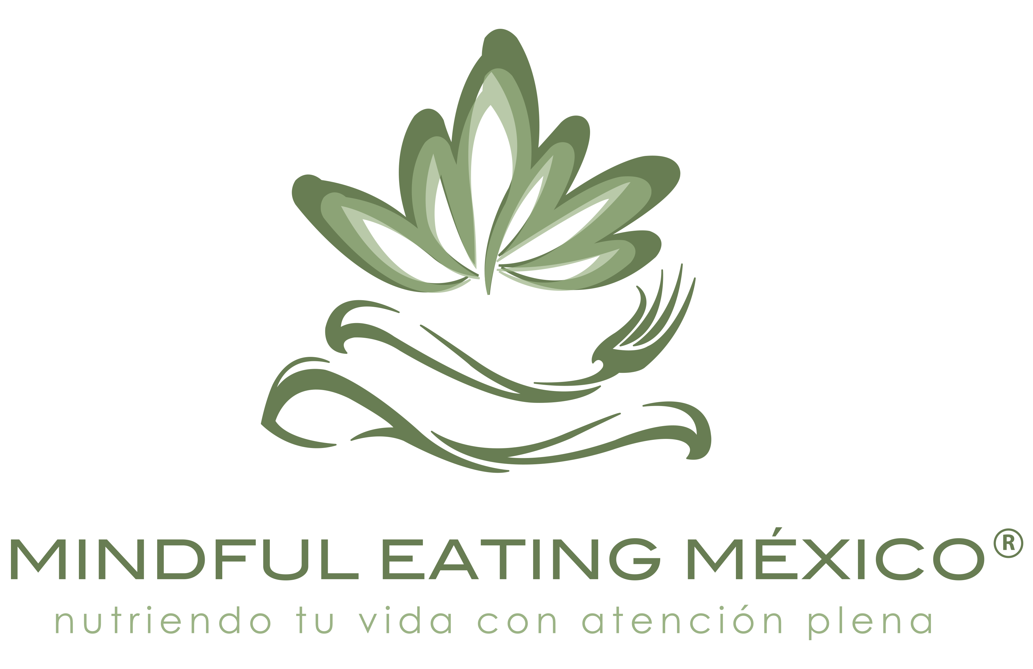 mindful-eating-mexico